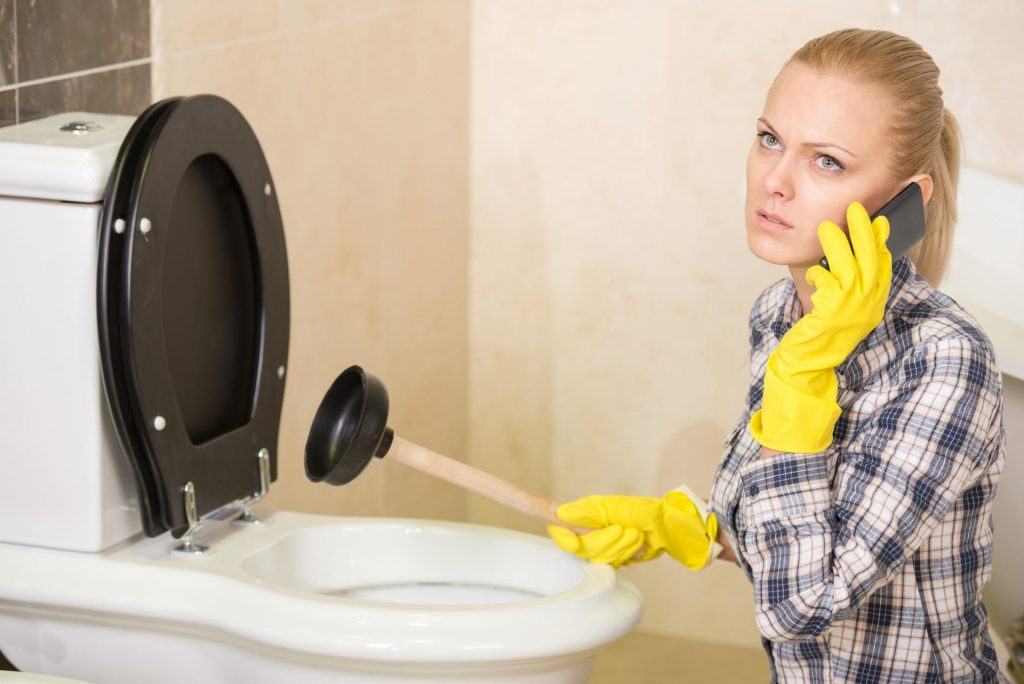 déboucher les WC
